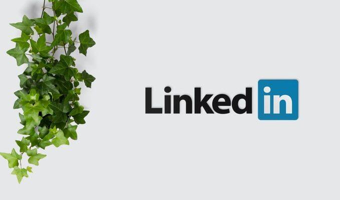 LinkedIn logo on white surface beside vines leaves